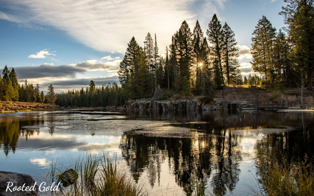 Island Park and Yellowstone Photography