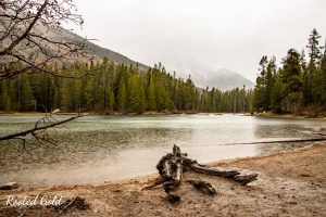 string lake teton national park