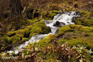 waterfall teton national park